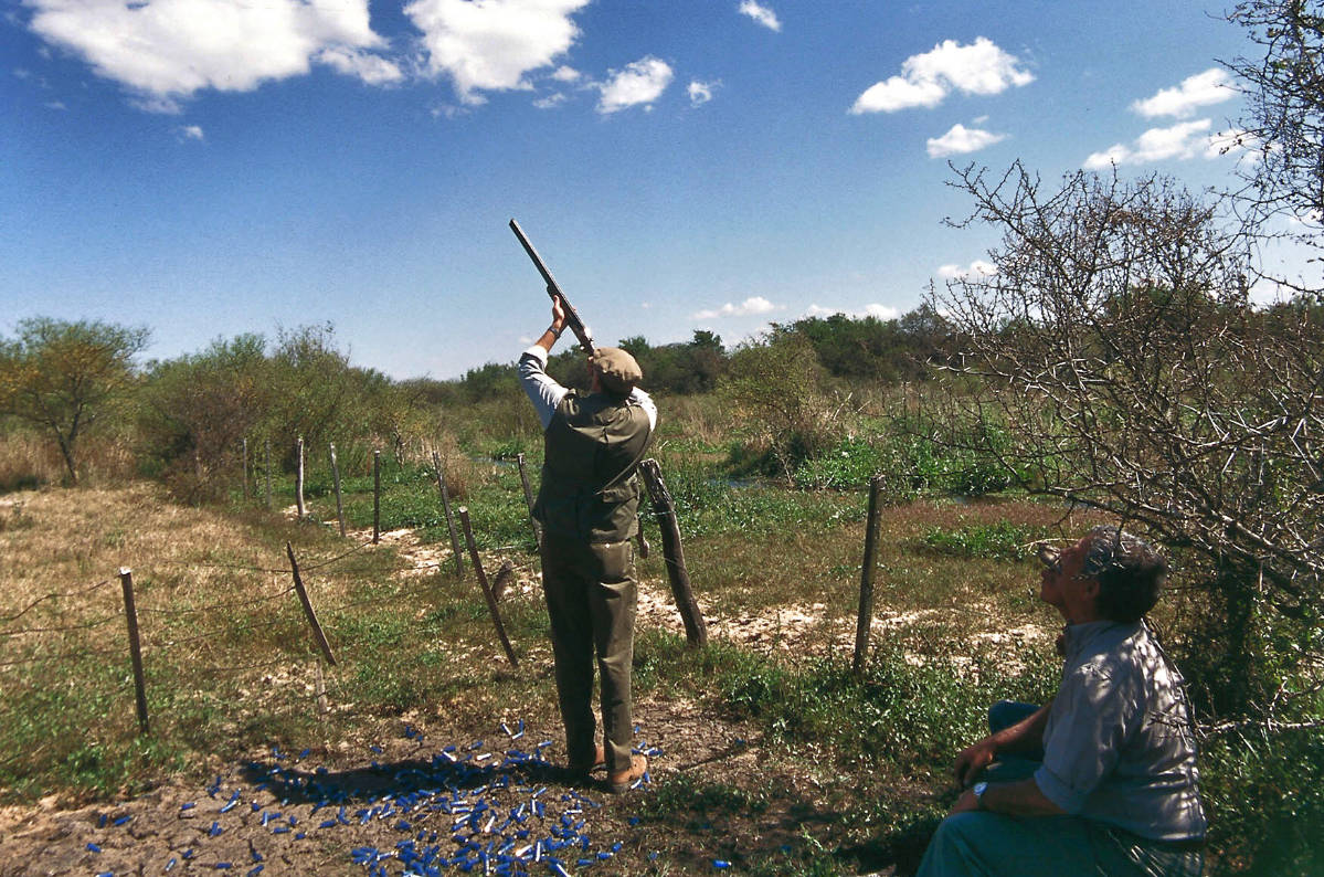 Dove Shooting Argentina May 2020